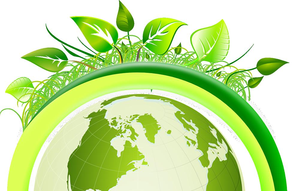 green web hosting dejorden     the official website of